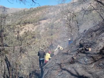 Apagan incendio en San Lucas que quemó más de 1.400 hectareas