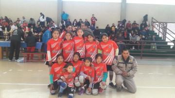 Arpaja Alta de Villa Charcas campeón departamental de voleibol