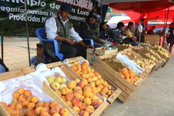 Chinimayu invita a degustar del durazno más rico y grande de la región