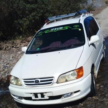 Desconocidos se roban un auto de la comunidad de Laramendi