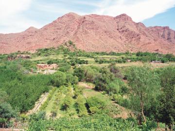 Evo Morales anunciaría la construcción de la represa La Laguna