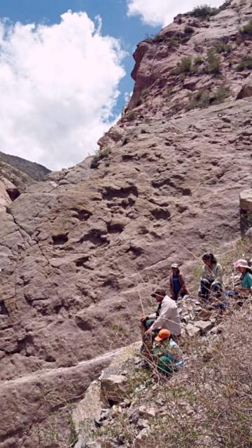 Experto confirma presencia de huellas de dinosaurios en Las Carreras