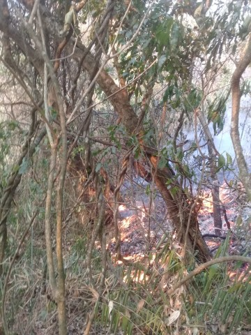 Hay incendio en la comunidad de Monte Mayor desde el 17 de septiembre