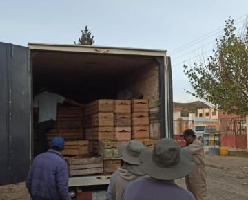 Productores de Culpina participarán de la II Feria de la Manzana en Montero