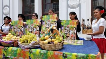 """Programan seis días continuos para hacer """"El Carnaval de tus sueños"""" en Villa Abecia"""