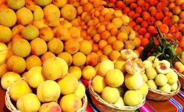 San Lucas: Productores reorientan cultivos tradicionales hacia el durazno