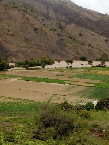 Tres comunidades de Villa Abecia perdieron el 60% de su producción