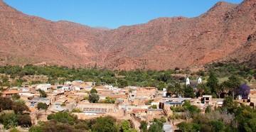 Villa Abecia pierde el 50% de la producción de durazno por falta de agua