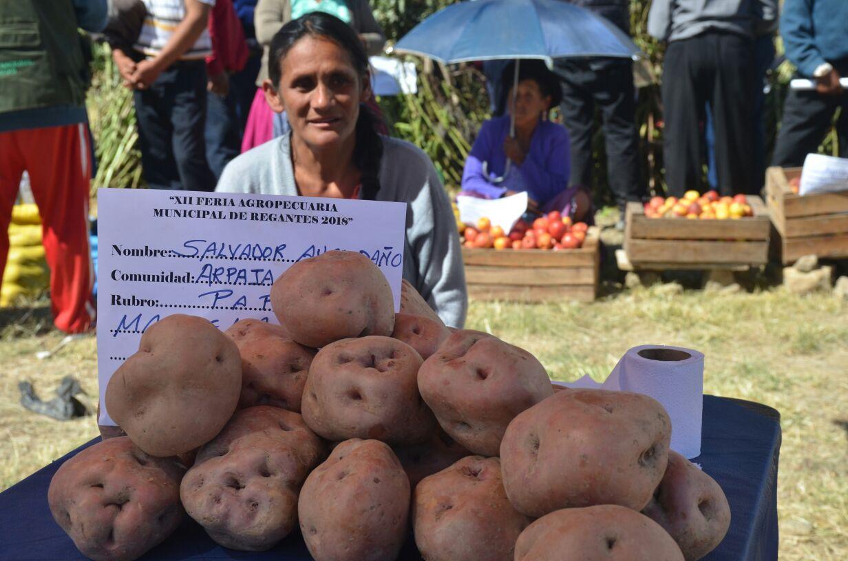 Feria de regantes de Villa Charcas reúne a unos 500 expositores