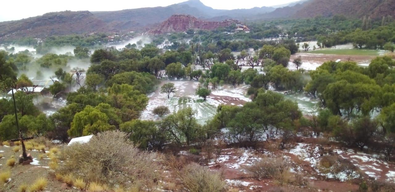 Granizada de una hora causa daños en el 100% de cultivos de La Torre