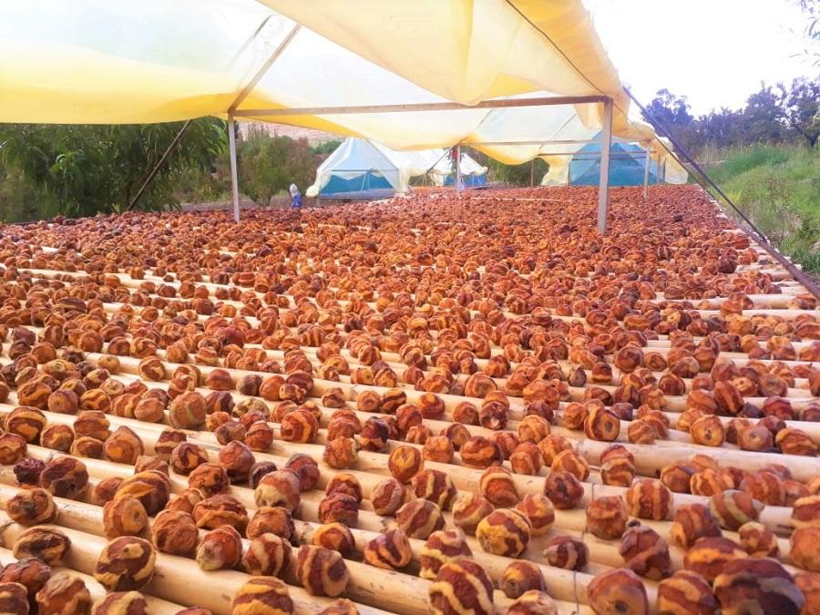 Liquimayu espera a más de 200 expositores en la feria del Mocochinchi