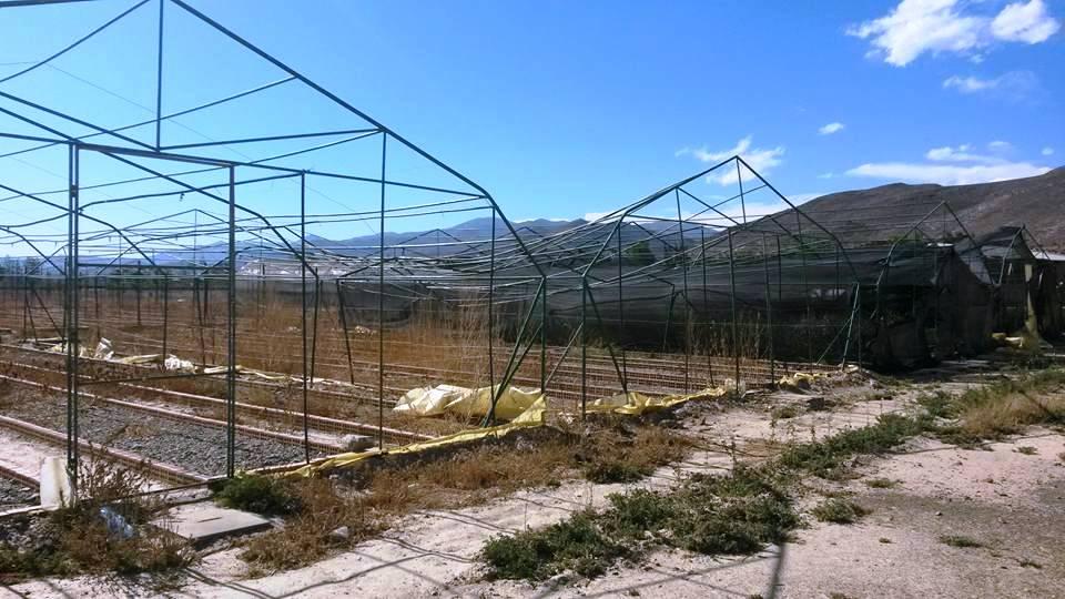 Vivero forestal municipal de culpina colaps por el viento for Construccion de viveros forestales